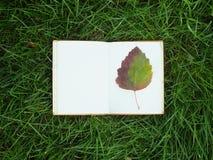 在绿草的笔记薄 图库摄影