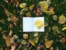 在绿草的笔记薄 免版税库存图片