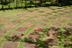 在绿草的红土带石道路 免版税图库摄影