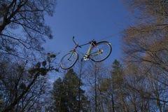 在绿草的红色自行车 图库摄影