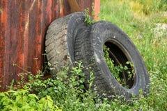 在绿草的老轮胎 免版税库存照片