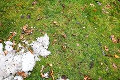 在绿草的肮脏的雪 库存照片