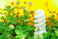 在绿草的节能灯 免版税库存图片