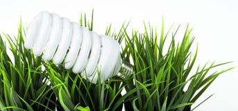 在绿草的节能电灯泡 免版税库存照片