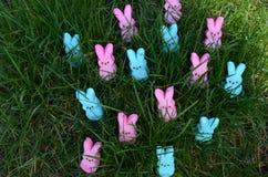 在绿草的蓝色和桃红色蛋白软糖兔宝宝 免版税库存照片