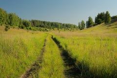 在绿草的被放弃的乡下公路与很远树和bl 库存图片