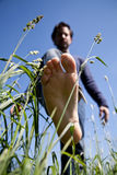 在绿草的赤脚 免版税库存图片
