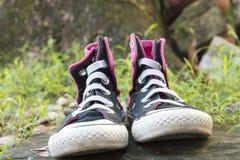 在绿草的运动鞋 库存照片