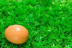 在绿草的鸡蛋 库存图片
