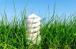 在绿草的Eco友好的电灯泡 免版税库存照片