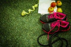 在绿草背景的体育鞋子  库存照片