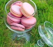 在绿草背景的Macarons玻璃碗 免版税库存照片