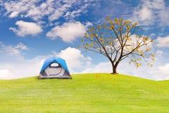 在绿草领域的圆顶帐篷 图库摄影