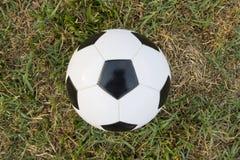 在绿草领域的足球 免版税库存照片