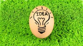 在绿草backgrou与创造性的想法概念的鸡蛋隔绝的 免版税库存图片