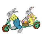 在滑行车的复活节兔子 免版税库存图片