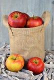 在黄麻袋子的新鲜的苹果 库存照片
