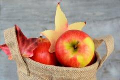 在黄麻袋子的有机苹果 免版税库存照片