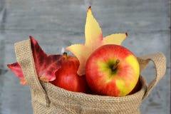在黄麻袋子的有机苹果 免版税库存图片