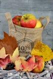 在黄麻袋子的有机苹果 图库摄影