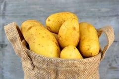 在黄麻袋子的黄色土豆 图库摄影
