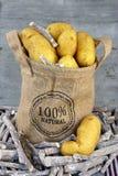 在黄麻袋子的黄色土豆 库存照片