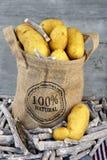 在黄麻袋子的黄色新鲜的土豆 图库摄影