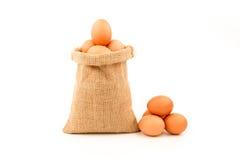 在麻袋布包裹的鸡蛋隔绝在白色背景 库存图片
