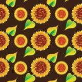 在黑褐色背景的向日葵 无缝的模式 免版税库存图片