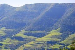 在巴西内部的山 免版税库存照片