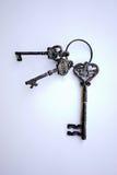 在主要圆环的古色古香的钥匙 库存图片