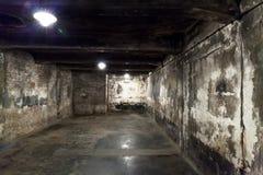 在主要奥斯威辛阵营的毒气室 免版税库存图片