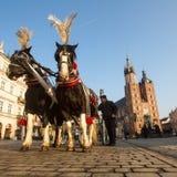 在主要集市广场的支架 它约会对13世纪 免版税库存照片
