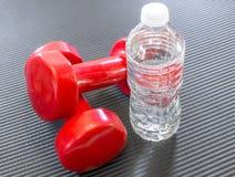在说谎一个清楚的瓶的两红色哑铃重量水旁边  图库摄影