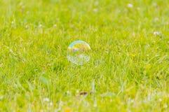 在说谎在草的公园小的泡影 免版税图库摄影