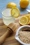 在画象切头的柠檬水必要 免版税库存照片