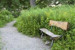 在绕象草的道路的一条土气日志长凳 免版税图库摄影