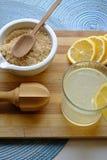 在画象顶端的柠檬水必要 库存照片