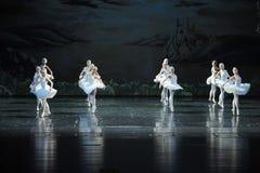 在水这整洁的反射在芭蕾芭蕾天鹅湖的形成 库存照片