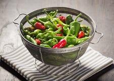 在滤锅的新墨西哥绿色和红色智利胡椒 库存照片