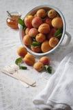 在滤锅的杏子 免版税库存图片