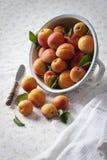 在滤锅的杏子 免版税图库摄影
