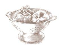 在滤锅的胡椒 库存例证