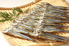 在滤锅,日本食物的干沙丁鱼 免版税库存照片