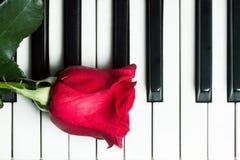 在琴键的红色玫瑰 抽象背景音乐 免版税库存图片