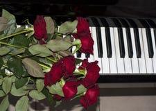 在琴键的红色玫瑰 免版税库存图片