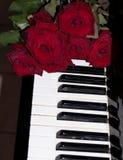 在琴键的红色玫瑰 免版税库存照片