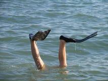 在黏附在水外面的鸭脚板的人腿 免版税库存照片