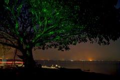 在水附近的夜树 免版税图库摄影