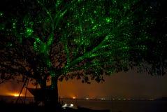 在水附近的夜树 免版税库存照片